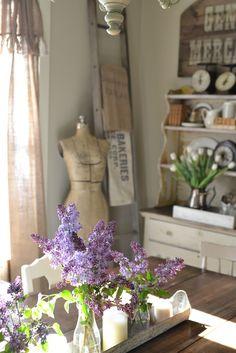 Lilacs in old milk bottles