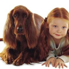 A red headed pair, probably up to no good. They look suspicious to me. Biddy Craft