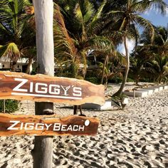 Ziggy's, Tulum, Beach, Honeymoon, Vacation, Travel, Travelblog