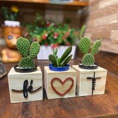 Wood Planters, Planter Boxes, Easy Woodworking Projects, Diy Wood Projects, Vasos Vintage, Succulent Arrangements, Unique Gardens, Cactus Y Suculentas, Wooden Crafts
