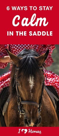 6 Ways To Stay Calm In The Saddle When you ride horses long enough, you'll learn that things can get frightening very quickly. Being able to stay calm in sticky situations can help you to get out of them safely, but staying calm is definitely a challenge. Horseback Riding Tips, Horse Riding Tips, Horse Tips, Riding Gear, Dressage, Types Of Horses, Equestrian Outfits, Equestrian Style, Equestrian Fashion
