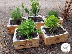 Une caisse à vin en bois transformée en jardinière DIY