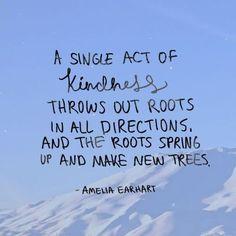 Spread kindness like seeds  #beconscious #bekind #kindnessquotes