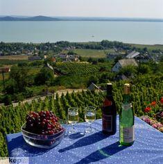 #Badacsony, badplaats aan het #Balatonmeer in Hongarije maar ook zeer bekend in een prachtige #wijnregio.
