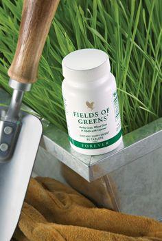 Ce mélange de poudre, entièrement d'origine végétale est une excellente source de nombreux éléments nutritionnels présents dans les légumes verts.