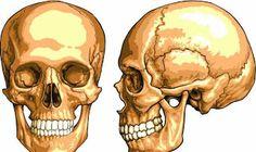 Estenose Crânio Facial - By Thay