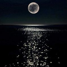 Poem: Moon Reflected on the Ocean Last night the moon ran away with the spoon It didn't matter what I thought. Or felt. I was too small to make any difference. The little dog laughed too loud Which was annoying because nothing was ...