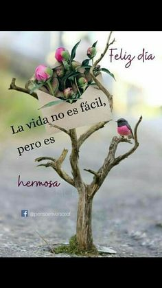 Morning Greetings Quotes, Good Morning Messages, Good Morning Quotes, Cute Spanish Quotes, Spanish Inspirational Quotes, Good Morning Smiley, Good Morning Friends, Public Witnessing, Spanish Greetings