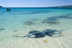 _EBT8708 Western Australia, Tourism, Surfing, Coast, River, World, Photography, Outdoor, Turismo