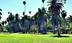 Parque Sinaloa en Los Mochis, Sinaloa