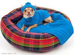 33 Ideas de guaridas y camas para consentir a tus mascotas.