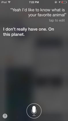 Things to ask Siri What To Ask Siri, Things To Ask Siri, Fun Things, Funny Quotes, Funny Memes, Hilarious, Jokes, Funny Shit, Siri Hacks
