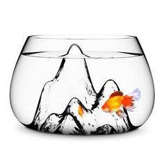 Aquarium verre et montagnes