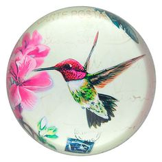 This beautiful Hummingbird Paperweight is surely a must for desks & paperwork that need a pretty feminine touch.