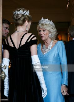 Camilla, Duchess Of Cornwall attends The Duke of Wellington's Waterloo banquet at Apsley House on June 18, 2015 in London, England.  (Photo by John Phillips - WPA Pool /Getty Images)