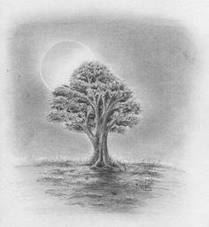 Zeichnen lernen - Baum Laubbaum Blätter Stamm Blattwerk - Tutorial
