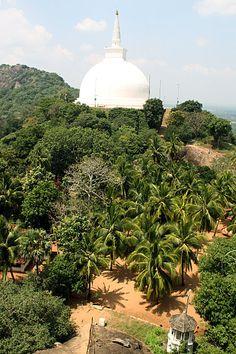 Palm Dagoba, Mihintale, Sri Lanka