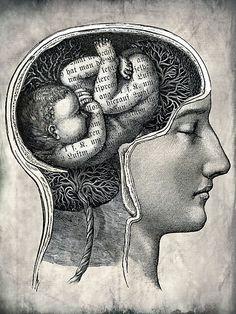 Catrin Welz Stein, Unborn Ideas