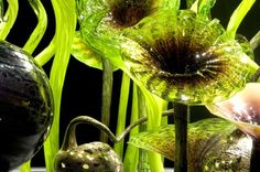 DALE CHIHULY Mille Fiori with Persian Lilies and Eelgrass, 2005 blown glass sculpture