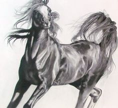 Pharoah's Flash Arabian Stallion Willow Stick on Canvas