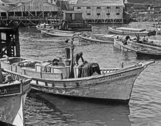 Cannery Row For Ed Ricketts Historical Pics Sailboat