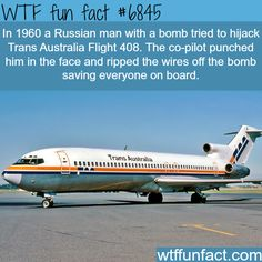 WTF Fun Facts is updated daily with interesting & funny random facts. We post about health, celebs/people, places, animals, history information and much more. New facts all day - every day! Australian Memes, Aussie Memes, Wtf Fun Facts, Crazy Facts, Random Facts, Random Stuff, Meanwhile In Australia, Weird But True, What The Fact