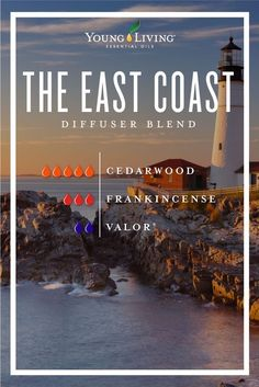 Essential oils for homesickness Are you missing home? Bring the East Coast forests to your bedroom or workspace by diffusing this blend! Combine 5 drops of Cedarwood, 3 drops of Frankincense, and 2 drops of Valor essential oils. Valor Essential Oil, Essential Oils Guide, Essential Oil Diffuser Blends, Young Living Essential Oils, Cedarwood Essential Oil Uses, Vetiver Essential Oil, Grapefruit Essential Oil, Ravintsara, Images