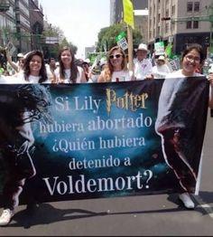 28 Fotos que van a matar de risa a todo Potterhead