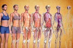 Tu știi ce se intâmplă cu adevărat în organism atunci când ții o cură de slăbire? Iată cât sunt de periculoase dietele greşit alese din comoditate!