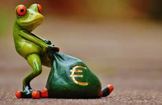 Free Image on Pixabay - Frog, Money, Euro, Bag, Money Bag Funny Frogs, Cute Frogs, Kermit, Ways To Become Rich, Sapo Meme, Animal Reiki, Frog Pictures, Frog Pics, Frog Art