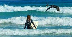 Galapagos, best destination surf