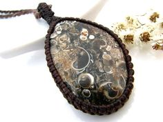 Christmas Gift ideas, Turritella Fossil necklace / Fossil Jewelry / Fossil pendant / gifts for dad / Brown / Geology / Rocks and minerals