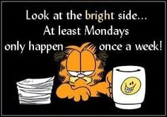 monday only happens once a week funny garfield days of the week mondays humor - but really, I love every day!