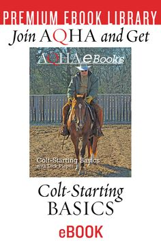 In the Colt-Starting Basics e-book, revered horseman Dick Pieper discusses the basics of starting a young horse, reining maneuvers and how you can use them to teach a horse to be handy whether he enters a show pen or not. Horse Training, Training Plan, American Stock, Reining Horses, Past Presidents, I Want Him, I Win, Farming, Books To Read
