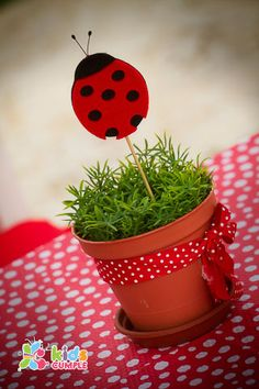 Ladybug Birthday Party. This is too cute! Especially for my little ladybug. <3