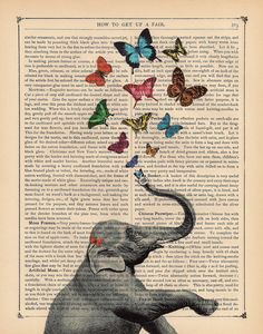 butterflies and elephant