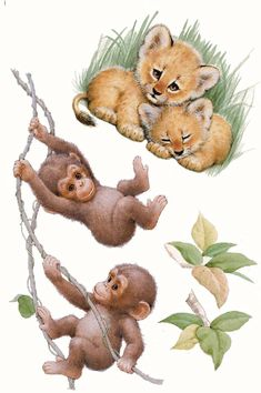 Rebeka Baby Animal Drawings, Cute Drawings, Lama Animal, Monkey Drawing, Tattoos Familie, Cute Animal Pictures, Cute Illustration, Animal Paintings, Cute Baby Animals