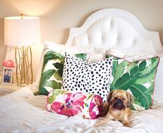 Palm leaf pillows with pink piping mixed with dalmatian print pillows || Cort In Session