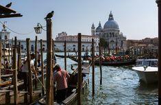 Canals.  Venice, Italy Venice Italy, Taj Mahal, Travel Photography, Nyc, London, Paris, Building, Big Ben London, Venice