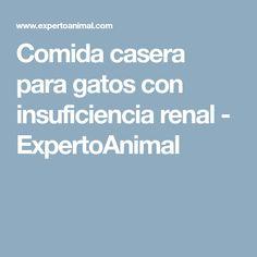 Comida casera para gatos con insuficiencia renal - ExpertoAnimal