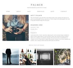 Palmer Prophoto 5 Template