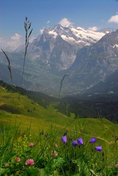 Mount Wetterhorn And The Grindelwald, Switzerland