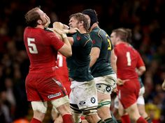Gallery: Wales 15 South Africa 24