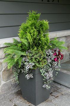 Windscapes Landscaping - summer planter pot