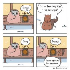 Empathy Comic 8, Cat Comics, Cat Sleeping, Cat Costumes, Red Riding Hood, New Day, Party Time, Bohemian, Kawaii