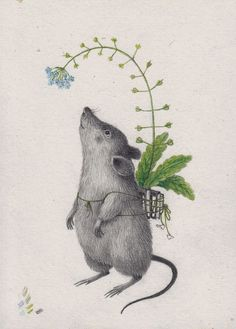 Delightful mouse with a backpack made of books, by joanna concejo