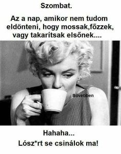 Funny Moments, Sarcasm, Karma, Einstein, Laughter, Poems, Funny Pictures, Funny Quotes, Thoughts