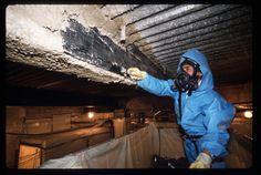 <b>asbestos</b> abatement firms have been established to remove <b>asbestos</b> ...