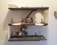 3 Level Cat Bunker Cat Hammock Shelves by CatastrophiCreations