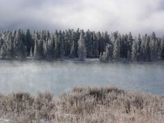 Icey scenes at Yellowstone National Park